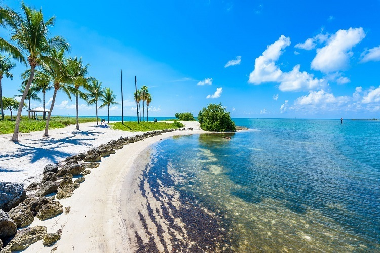8 Fun Things to Do On Your Next Florida Vacation